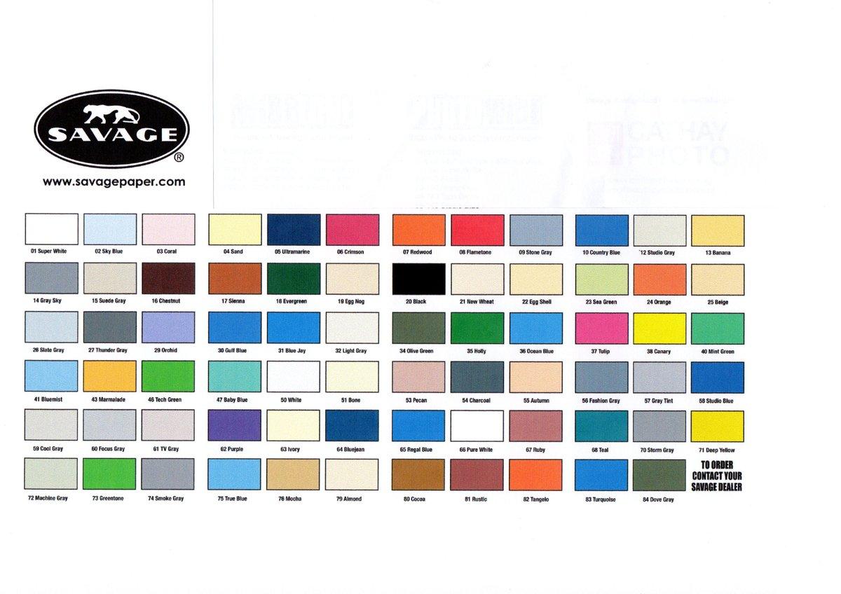 Macys Camera Shop Seamless Bg Paper